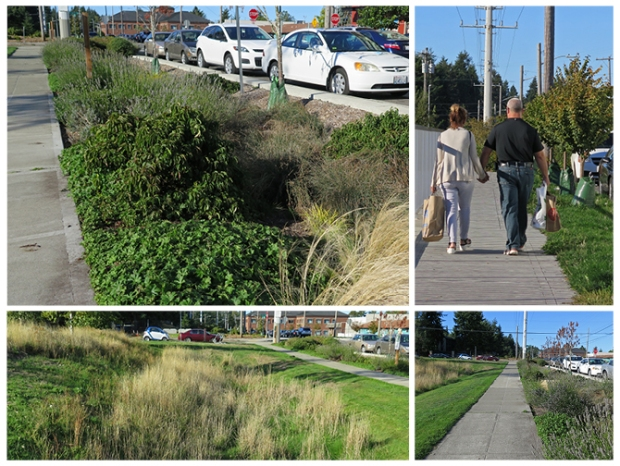 Linden Ave has been softened with greening