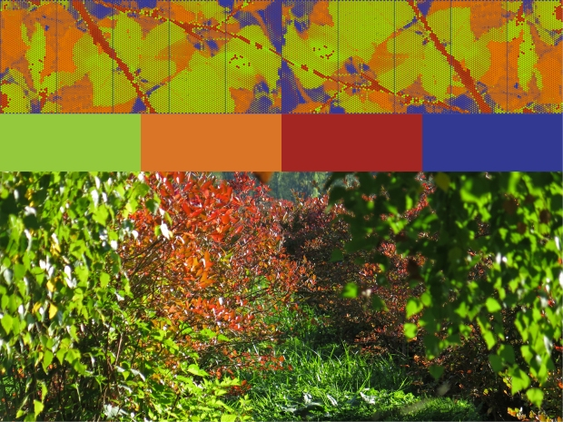 Template 5 adds dark purple and orange, colors found in the blueberry fields in autumn.